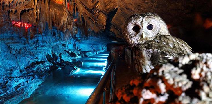 Zonguldak'ın eşsiz güzelliklerinden Gökgöl Mağarası