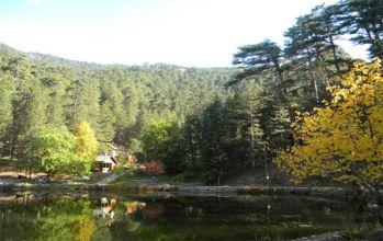 Dipsizgöl Tabiat Parkı